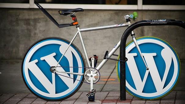 Wordpress SEO Leitfaden für Anfänger