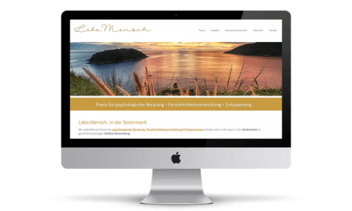 HidenDesign-Webdesign-Website-Lebemensch