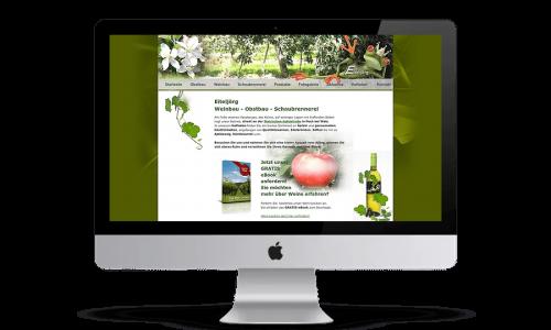 Website Webdesign HidenDesign Eiteljörg Kapfenberg Steiermark